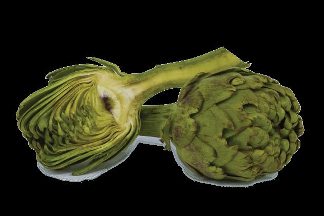 karaciğere iyi gelen bitkiler