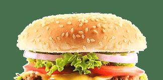 çizburger kalori değeri