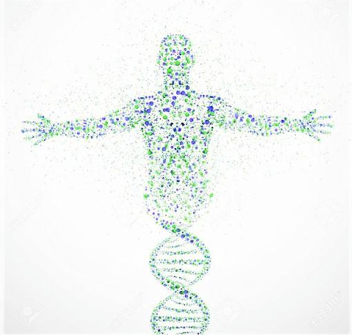 genetik kodlar